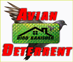 Bird Banisher | Scare Those Pesky Birds Away Now!